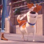 Тайная жизнь домашних животных 2: вышел трейлер