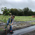 Дженнифер Гарнер занялась фермерством